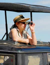 Africa Travel African Safari South